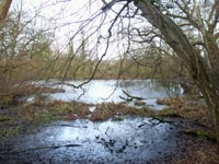 Source of the River Crouch